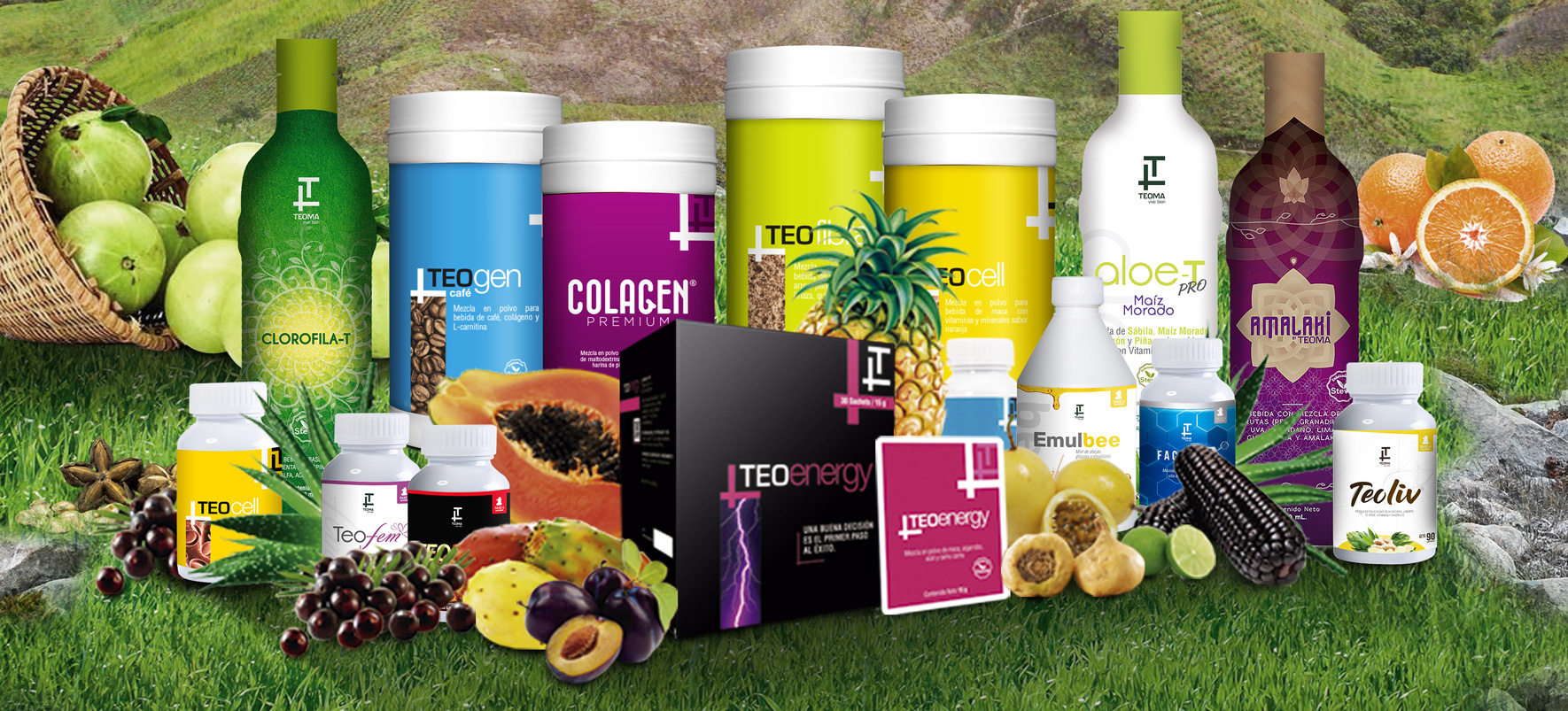 PRODUCTOS TEOMA